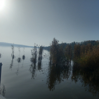 Wolziger See 2